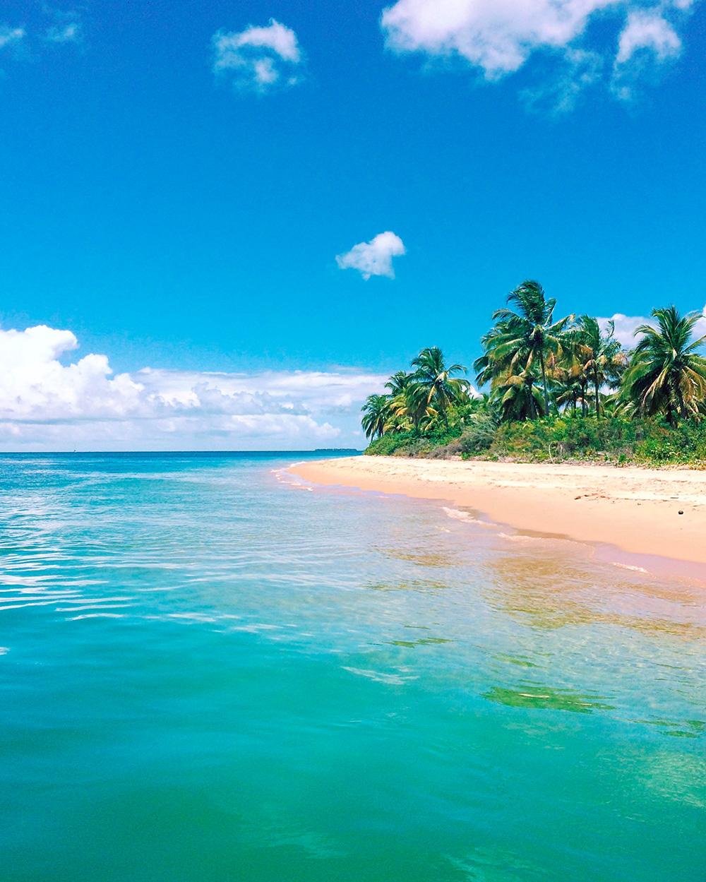 Ilha Campinho Bahia Bresil